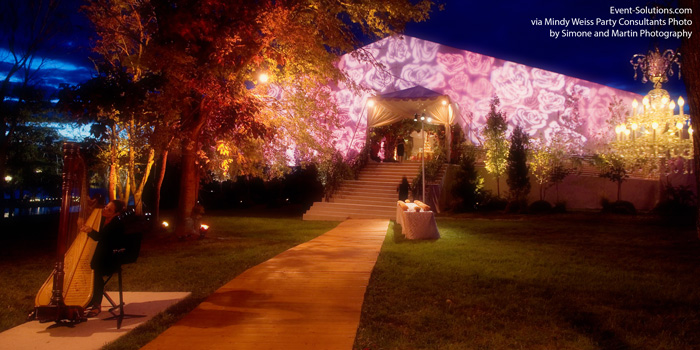 Rose Projection Tent Lighting